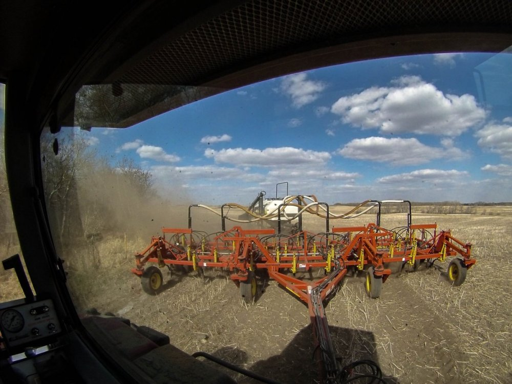 First day seeding.jpg