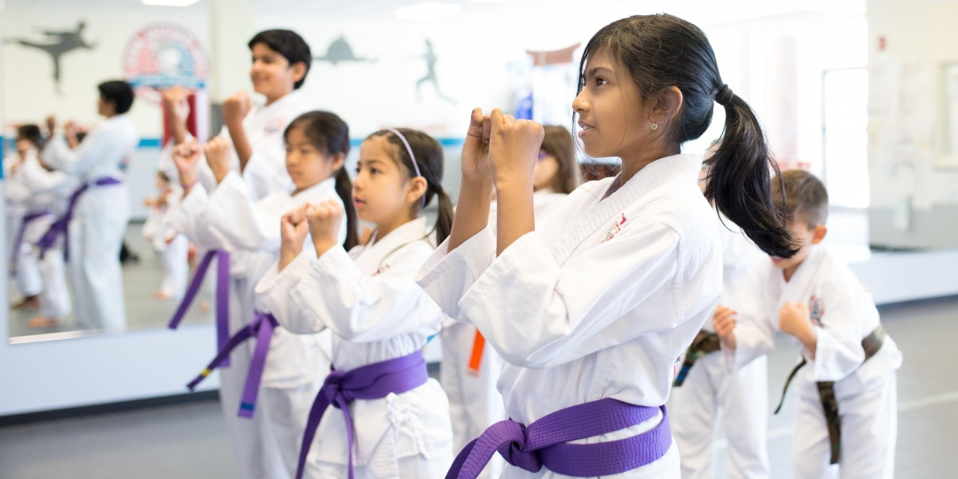 Two Free Classes AND a FREE Uniform at PRO Martial Arts Naperville ($75 Value!) - Partner Offer Image
