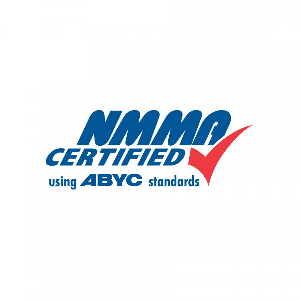 2100 regal boats overview nmma abyc uscg ce certified greentooth Images