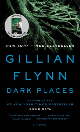 Dark Places by Gillian Flynn - Book Review