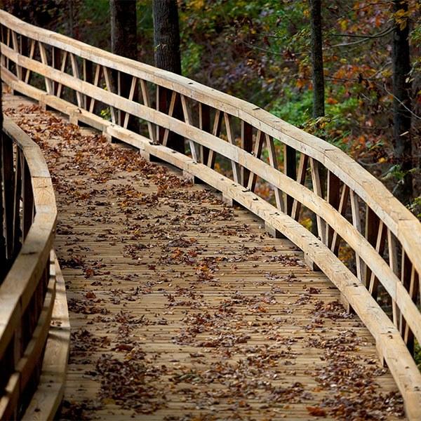 Seven Family Friendly Hiking Trails at Reynolds Lake Oconee