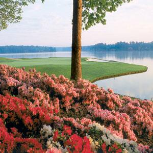 Big Things Are Blooming at Reynolds Lake Oconee This Spring