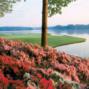 Big Things Are Blooming at Reynolds Lake Oconee This Spring
