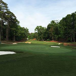Reynolds Golf Refresh