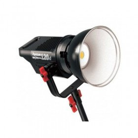 2X Aputure 120D LED Light