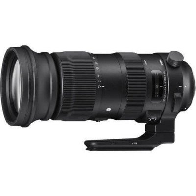 Sigma 60-600mm Sports Lens for Nikon F picture 1