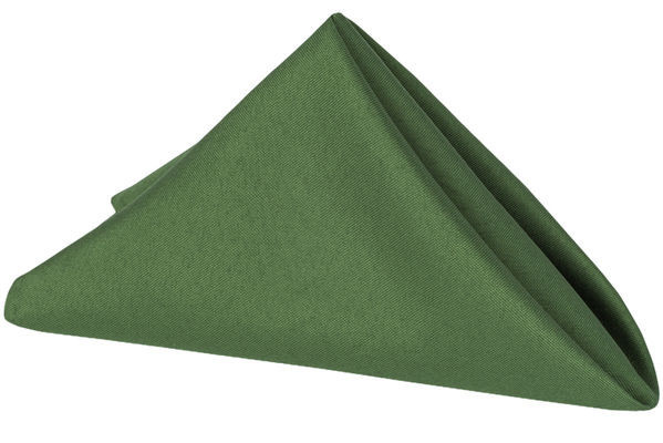 "Willow Green – Napkin – Poly – 20""x20"""
