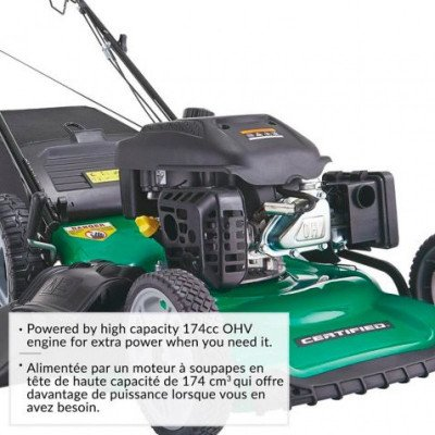 self-propelled lawnmower picture 2