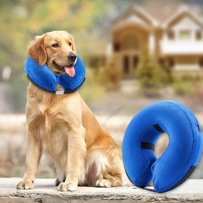 Protective Inflatable Collar for Dogs and Cats picture 1