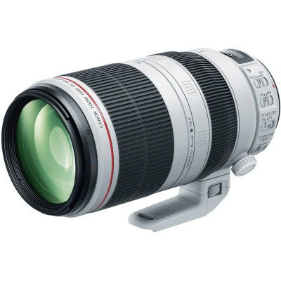 canon ef 100-400mm f/4.5-5.6 l is ii usm lens