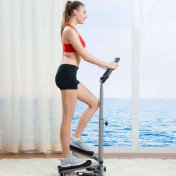 Twister Stepper with Handle Bar