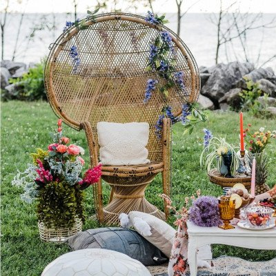 Aloha Peacock Chair picture 2