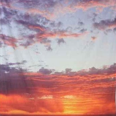 Sunset Photobooth Backdrop picture 1