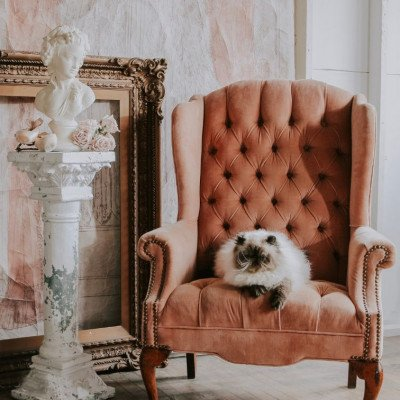 Peony Wingback Chair picture 2