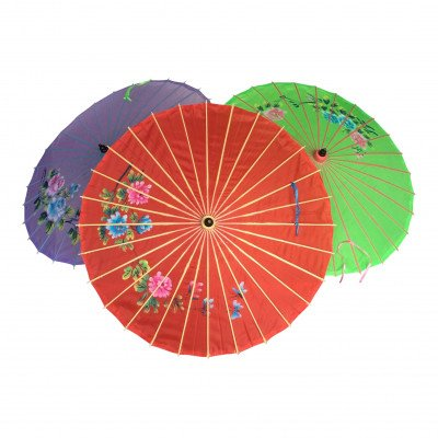 Chinese Parasol picture 1
