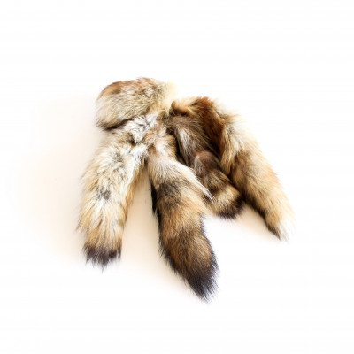 Racoon Tails picture 1