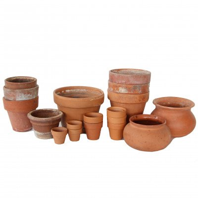 Clay Pot picture 1