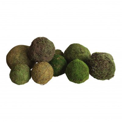 """9"""" Moss Ball picture 1"""
