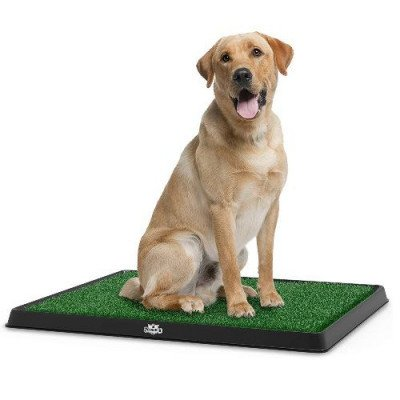 Artificial Grass Bathroom Mat for Puppies picture 1