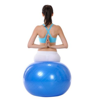 exercise ball picture 2