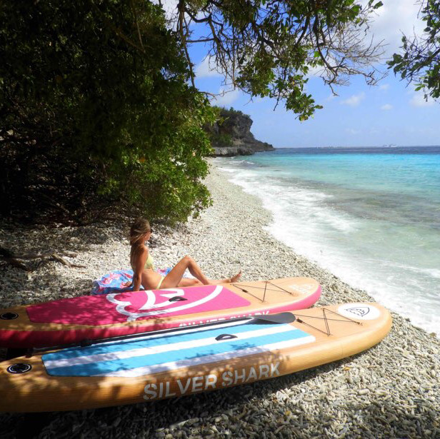 Paddle board - (inflatable)
