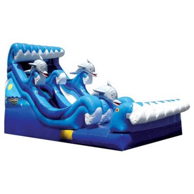 Dolphin Inflatable Inflatable Slide - Dry picture 1