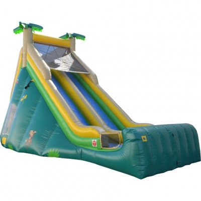 Extreme Dual Lane Inflatable Slide picture 1