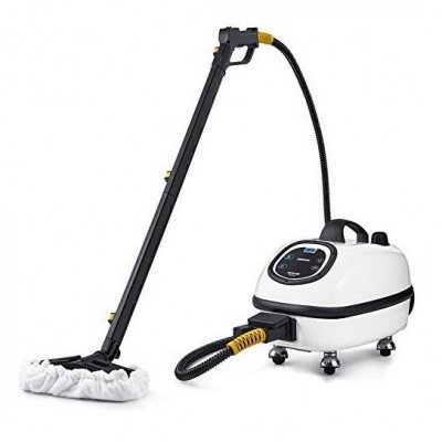 Commercial Steam Cleaner picture 1