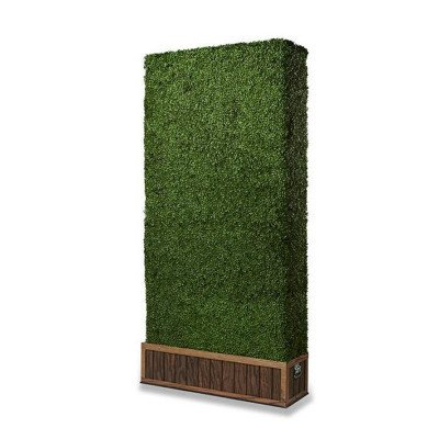 4 x 8 foot Boxwood Wall picture 1