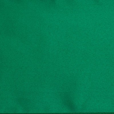 Kelly Green Poly Napkin Pack of 12 picture 1
