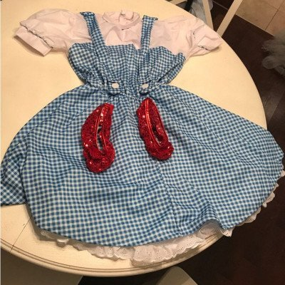 dorothy adult costume - wizard of oz-1