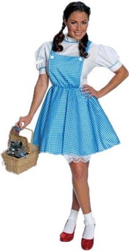 Dorothy adult costume - wizard of oz