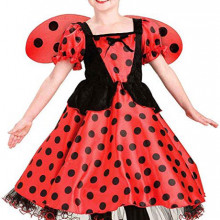 Child ladybug costume with wings