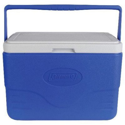 28-quart cooler with bail handle