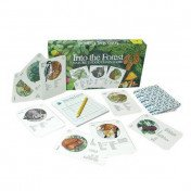 Into the Forest - Nature's Food Chain Game