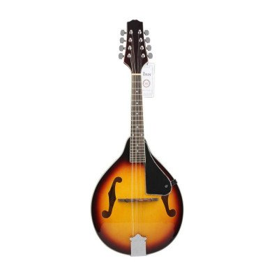 mandolin musical instrument picture 1