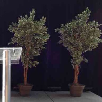 7ft ficus artificial tree-1