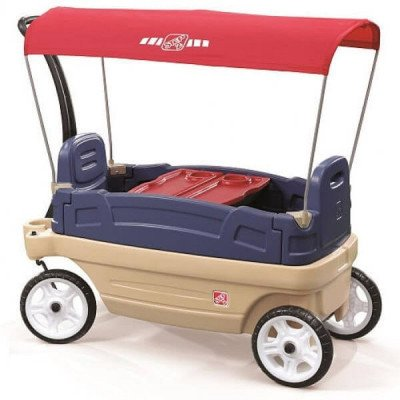 Wagon with Canopy picture 1