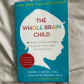 Whole Brain Child Book