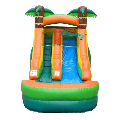 12' Tropical Inflatable Wet-Dry Slide picture 2