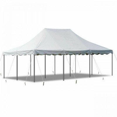20 X 40 White Canopy Pole Tent picture 1