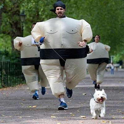 inflatable sumo wrestler wrestling costume picture 1