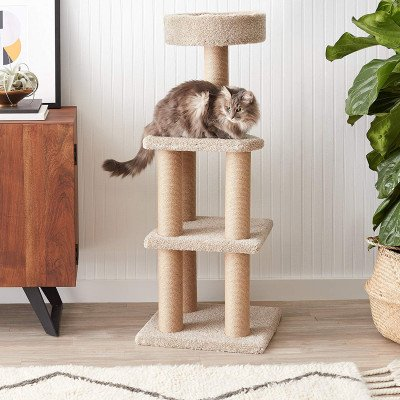 cat activity tree with scratching posts