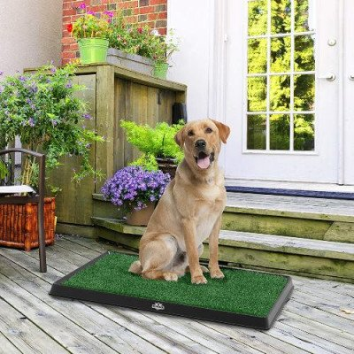 Artificial Grass Bathroom Mat for Puppies picture 2