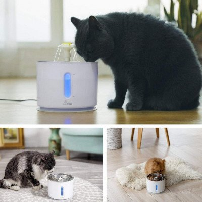 Cat Water Fountain picture 1