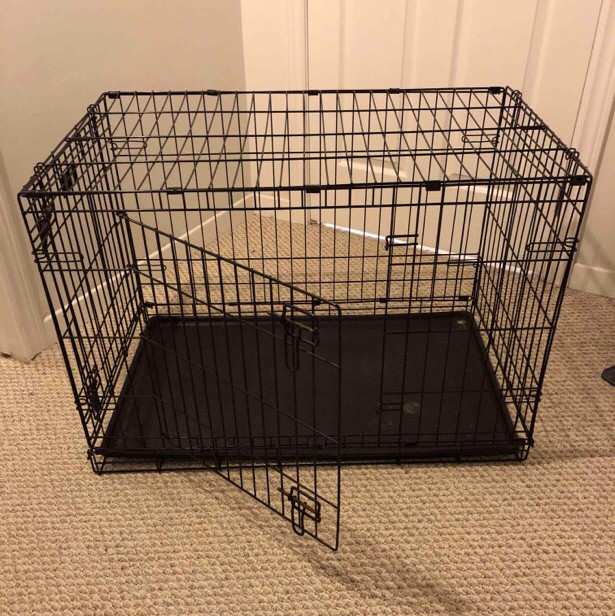 large dog crate-1