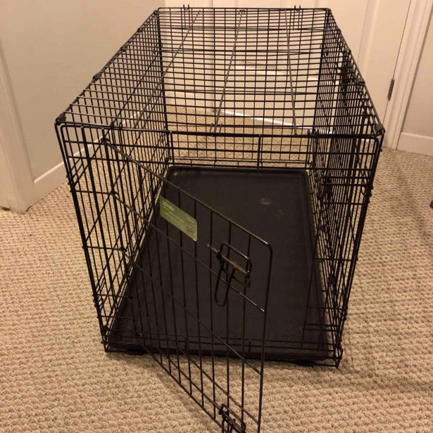 large dog crate-2