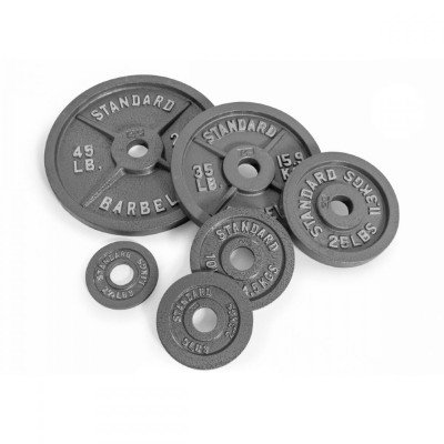 45 lbs and 25 lbs metal plates picture 1