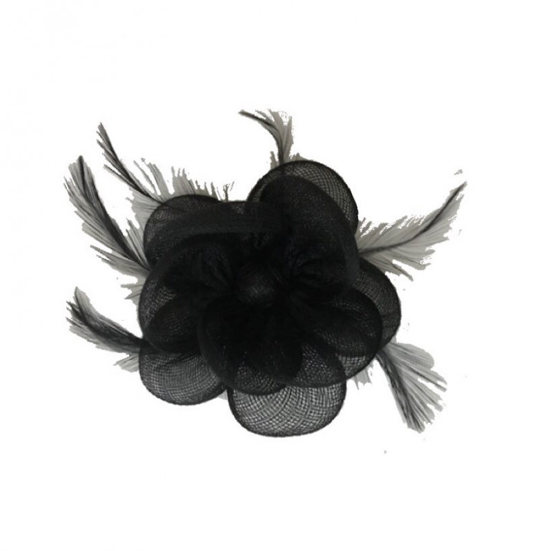 Brouche or hair clip