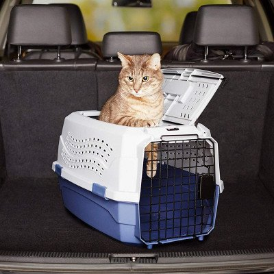 Two-Door Top-Load Pet Kennel picture 1